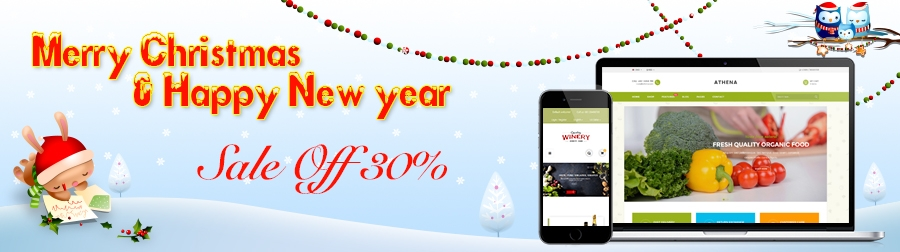 Merry Christmas & Happy New Year 2017, whole Store Sale!